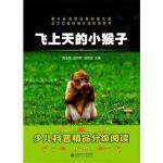 飞上天的小猴子 薛贤荣 陈龙银 安徽大学出版社