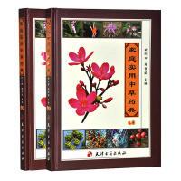 家庭实用中草药典(2卷) 天津古籍出版社 全彩铜版纸 16开2本