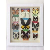 中式实木真蝴蝶标本工艺品卧室客厅办公室装饰画昆虫相框装修饰品 其他长方形尺寸独立