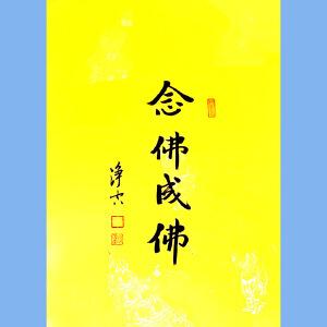 澳洲净宗学院院长,香港佛陀教育协会董事主席净空(念佛成佛)