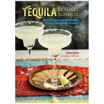 Tequila Beyond Sunrise 龙舌兰酒超越日出 英文原版餐饮食谱
