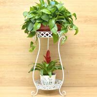 欧式铁艺多层花架绿萝吊兰阳台花架子地面客厅室内落地花盆架 白色(两层 高70cm)花瓶款