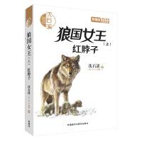 沈石溪和他喜欢的动物小说:狼国女王(上).红脖子