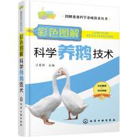 图解畜禽科学养殖技术丛书--彩色图解科学养鹅技术