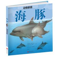 动物家庭:海豚