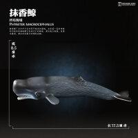 早教认知玩具仿真动物模型海洋生物认识世界启智玩具鲨鱼鲸鱼海豚企鹅海龟摆件儿童