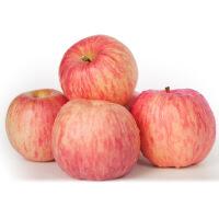 【包邮】山东烟台栖霞红富士苹果5斤 肉厚脆甜多汁 新鲜水果