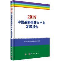 2019中国战略性新兴产业发展报告