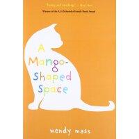 英文原版 芒果猫 施耐德家族小说奖 儿童文学 A Mango-Shaped Space