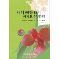 红叶柳等彩叶树种栽培与管理