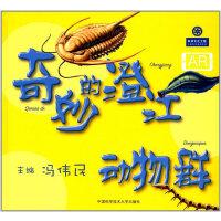 奇妙的澄江动物群