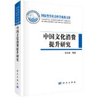 中国文化消费提升研究
