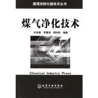 煤气净化技术/煤清洁转化新技术丛书 许世森,李春虎,郜时旺 化学工业出版社