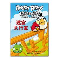 愤怒的小鸟思维能力培养游戏书――迷宫大行家 罗威欧娱乐有限公司 湖南少年儿童出版社