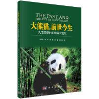 大熊猫的前世今生:长江都督史前熊猫大发现