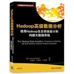 Hadoop高级数据分析 使用Hadoop生态系统设计和构建大数据系统 [美] Kerry Koitzsch 王建峰