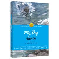 我的小狗(诺奖少年版,此版本销量靠前,44万读者五星好评热评!)