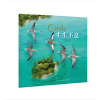 《生生不息》一只鸟的迁徙 壮阔视野下的生命 斑尾塍鹬 拼贴画 读小库儿童书绘本 3-6岁