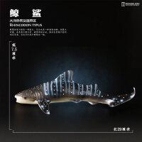 玩具仿真动物模型海洋生物鲨鱼鲸鱼海豚企鹅海龟摆件儿童