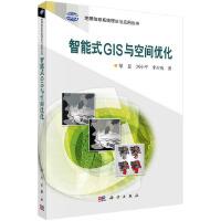智能式GIS与空间优化