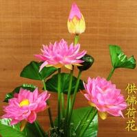 仿真荷花百合花供佛用品莲花 寺庙佛堂装饰荷花假花 塑料莲花