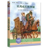 贝茜成长的奥秘(2019年新版,马爱农翻译)
