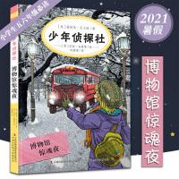 把秘密藏在秘密里2020年寒假阅读图书10-12岁小学生寒假假期课外读物小学生五六年级寒假阅读故事书校园读物小学课外书