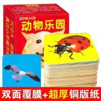动物乐园直映认字教材全套儿童学子卡认知卡 看图识字卡片书婴幼儿早教书0-1-2-3岁宝宝全脑记忆认动物 小孩书籍