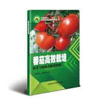 番茄高效栽培技术与病虫害防治图谱