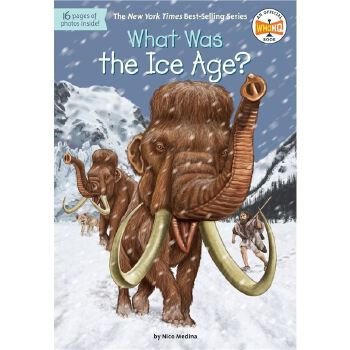 现货 英文原版 What Was the Ice Age?