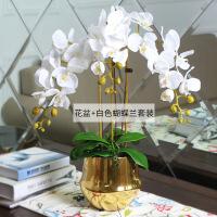 现代轻奢手感仿真蝴蝶兰花艺套装摆件样板间客厅餐厅金色花瓶装饰