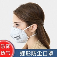 2.5防雾霾口罩呼吸阀碟形防尘口罩透气男女个性防风骑行n95