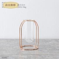 创意玻璃花瓶摆件透明客厅干花插花水培欧式简约现代电视柜装饰品SN3586