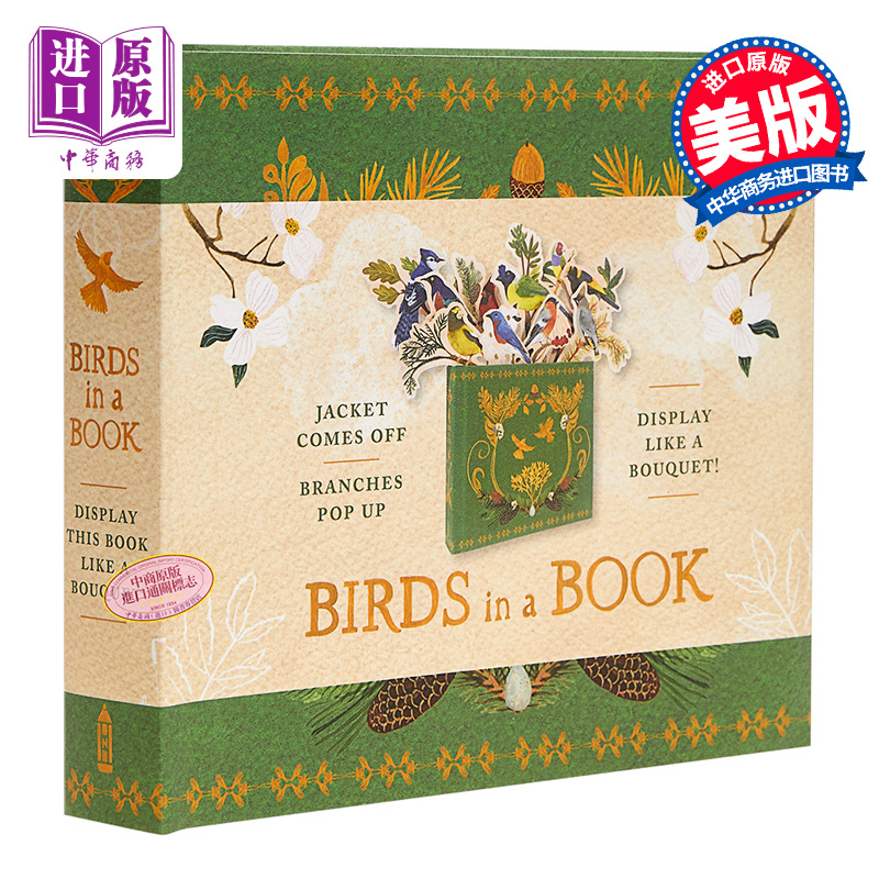 【中商原版】创意鸟笼活动书 英文原版 Birds in a Book