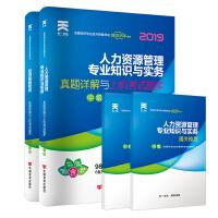 经济师中级2019人力资源专业教材配套试卷:人力资源管理专业知识与实务+经济基础知识(全套2本)