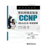 思科网络实验室CP(路由技术)实验指南 梁广民 电子工业出版社
