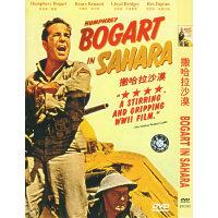 撒哈拉沙漠(简装DVD)