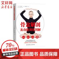 骨盆解剖及功能训练图解 北京科学技术出版社