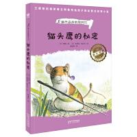 猫头鹰的秘密(奇想国世界畅销小说系列)家庭的动物小说,看见弱小者的抗争与成长