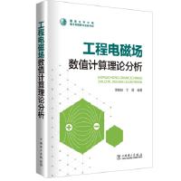 工程电磁场数值计算理论分析 李朗如 王晋 中国电力出版社