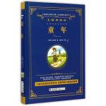统编版快乐读书吧(六年级上)指定阅读 童年-语文新课标必读丛书