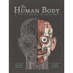 【中商原版】立体书:身体构造 英文原版 The Human Body 儿童身体健康教育科普 立体书翻翻书绘本