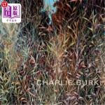 【中商海外直订】Charlie Burk: Journey in Abstraction