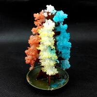 会开花的纸树 科技创意圣诞树小号鹦鹉装饰品实验玩具童年
