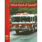【预订】What Kind of Sound?