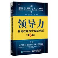 领导力:如何在组织中成就卓越(第六版)
