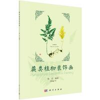 pod-蕨类植物装饰画