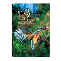 野鸟放大镜食衣篇(自然观察丛书) 亲眼目击鸟类的奇妙生活!