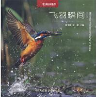 【二手书9成新】 飞羽瞬间:中国野生鸟类精彩图片选(第1卷) 张书清,赵超 9787500081319