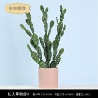 家用北欧家居装饰品 仿真植物仙人掌盆栽 室内客厅绿植摆件 盆景摆设SN6629